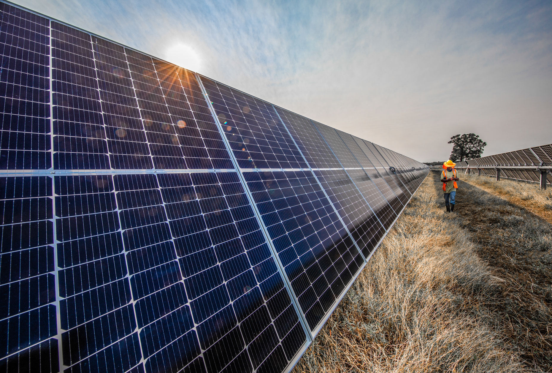 Impact Solar Project in northeast Texas