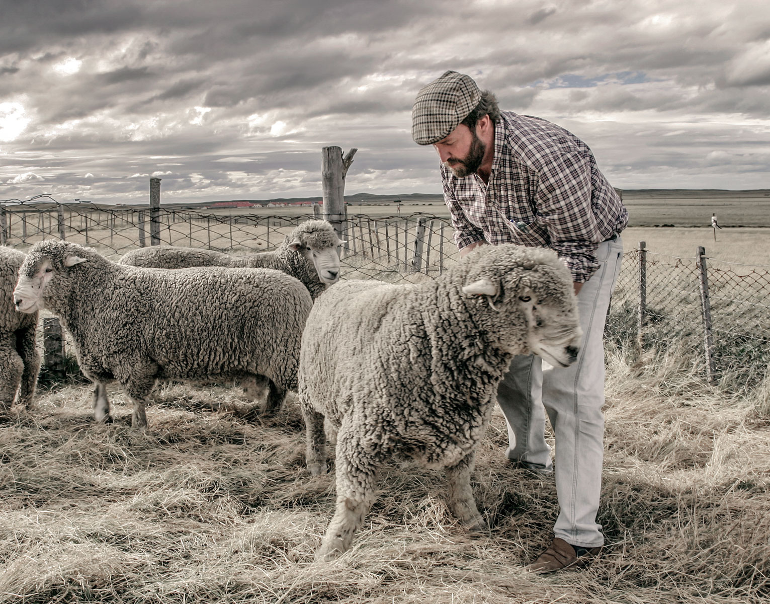 A sheep rancher in Tierra del Fuego, Argentina.